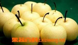 梨的功效与作用及食用禁忌